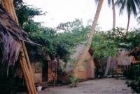Old Photos Of Thansadet