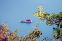 Orion Boat Trips